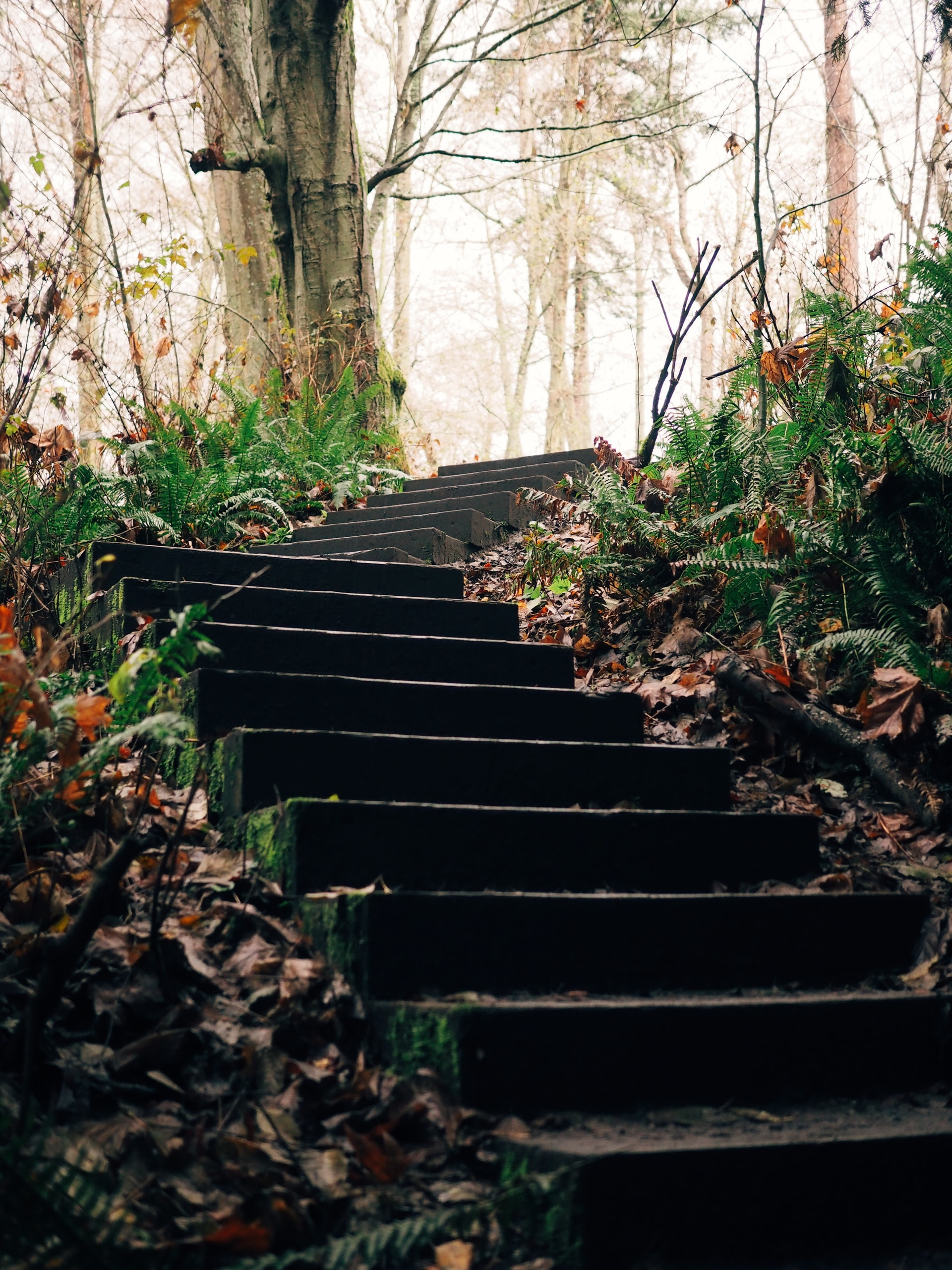 stair steps outside